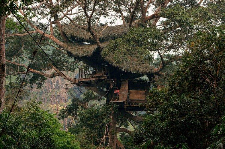 محمية بوكيو الطبيعية