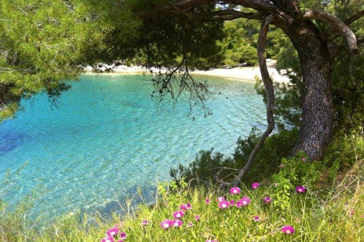 جزيرة ملجيت