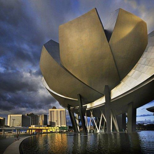 متحف علوم الفن تحفة فنية معمارية حديثة على شكل زهرة اللوتس