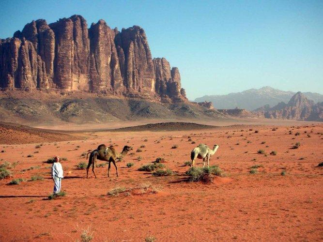 محمية وادي رم في الأردن