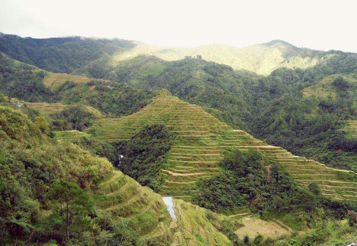 مصاطب الأرز في الفلبين