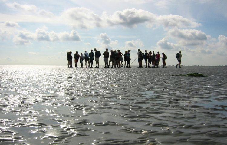 بحر وادن بين هولندا وألمانيا والدنمارك
