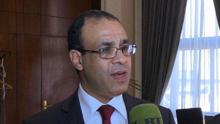 بدر عبدالعاطي السفير المصري لدى ألمانيا