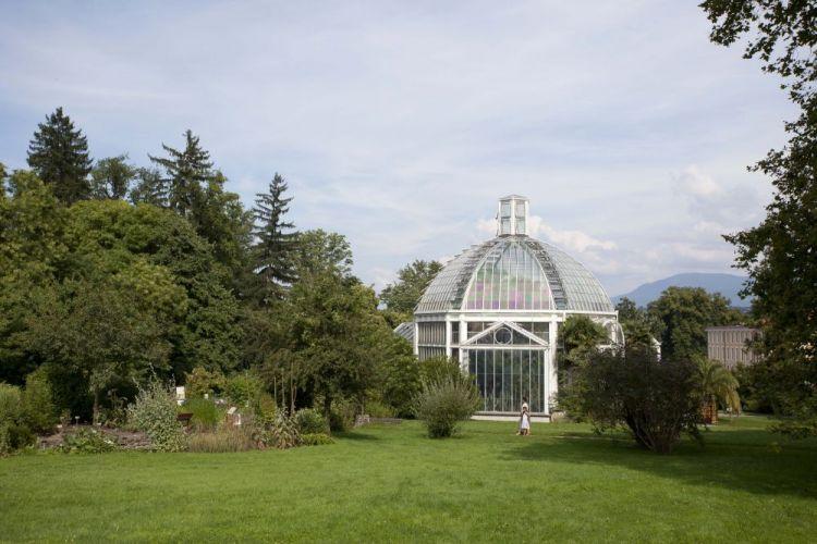 Stroll in one of Geneva's 50 verdant parks
