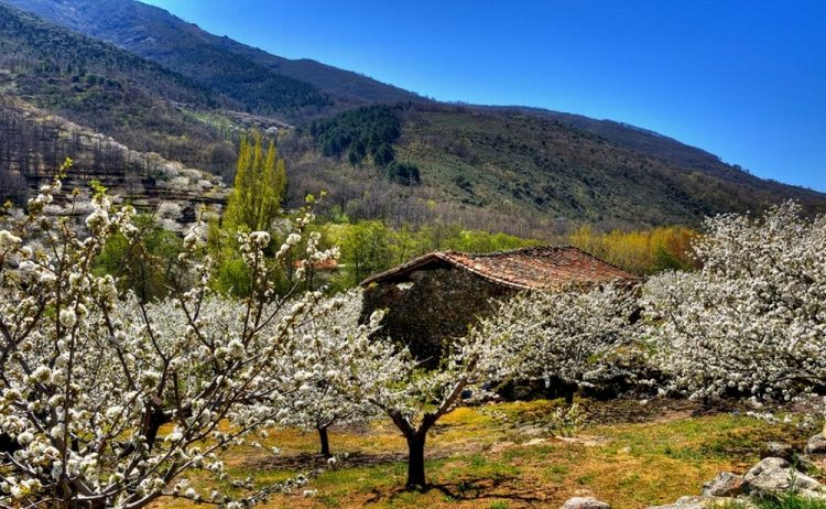 إكستريمادورا في غرب اسبانيا