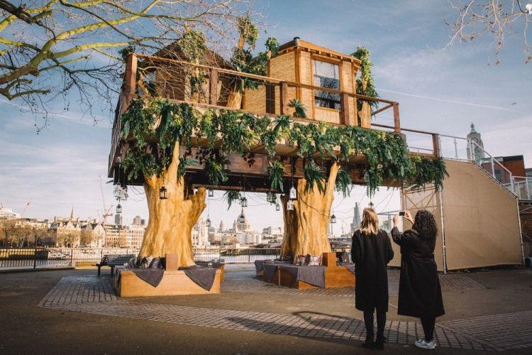 منزل الشجرة في توسكانا