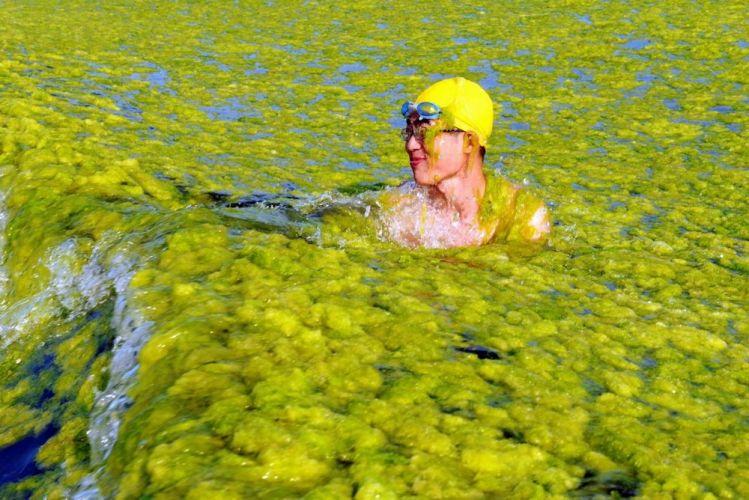 البحر الأصفر