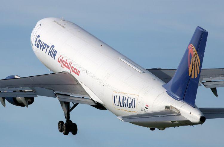 رحلات المصرية للطيران