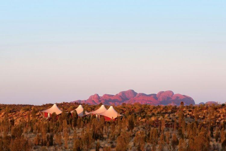 المخيم