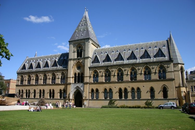 متحف جامعة أكسفورد