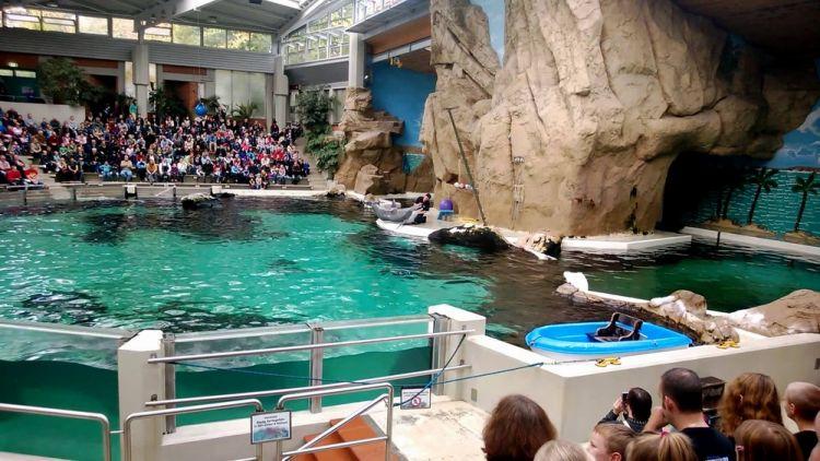 حديقة حيوان دويسبورغ