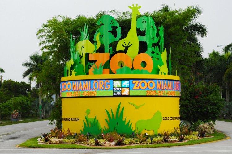 حديقة ميامي للحيوان في مدينة ميامي