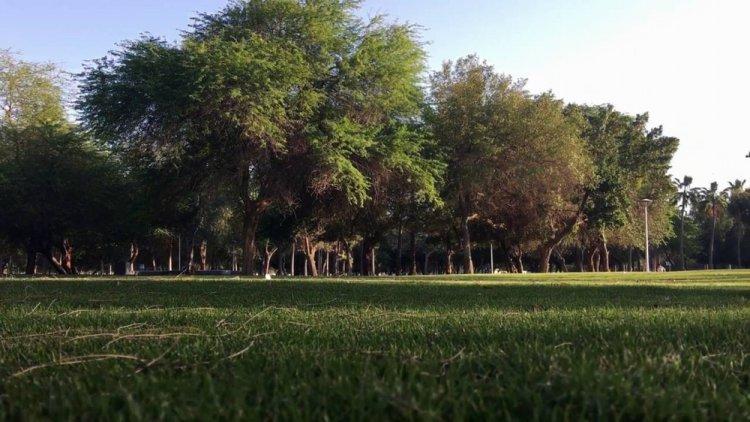 متنزه الدفي