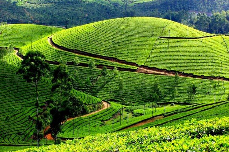 الطبيعة الخلابة في تاميل نادو Tamil Nadu