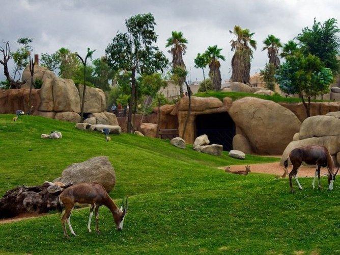 حديقة حيوان بيوبارك