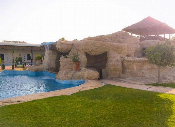 جزيرة السعادة أبوظبي