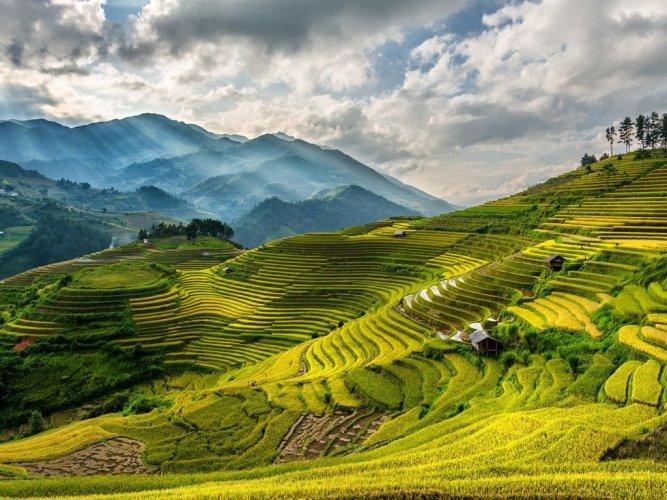 مدينة سابا في فيتنام