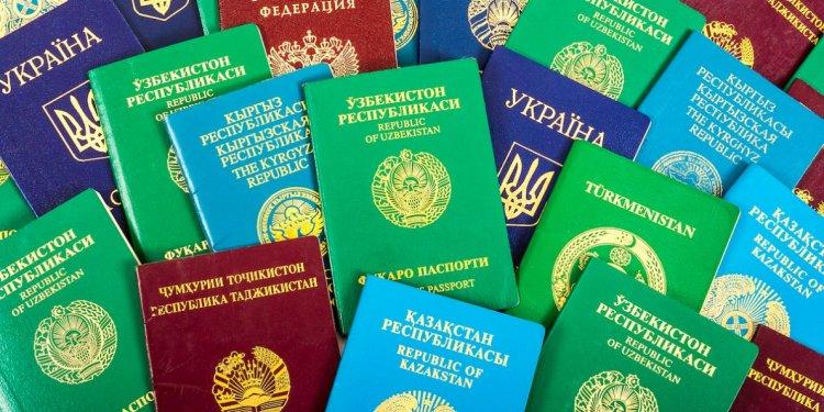 معايير اختيار ألوان جوازات السفر حول العالم