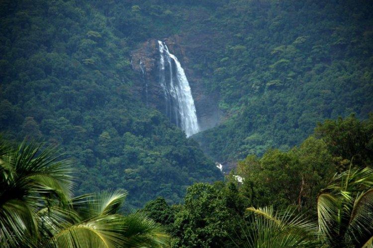 الطبيعة في الهند