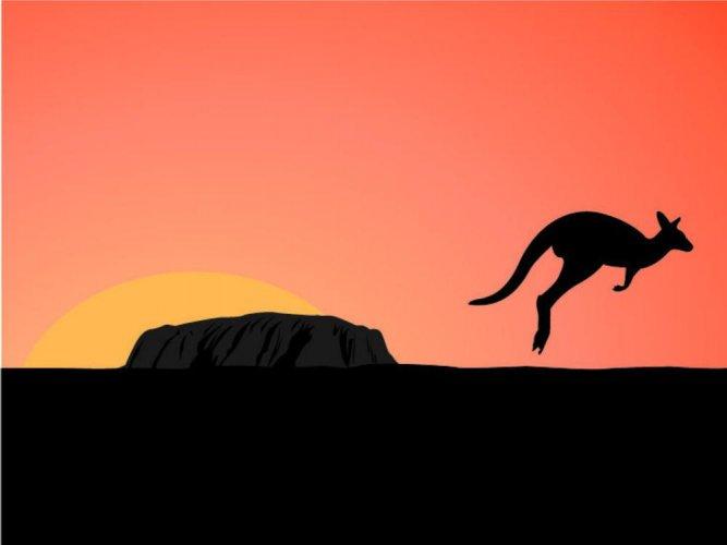 الكانغارو اولورو استراليا