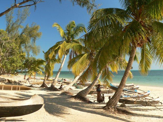 شواطئ النخيل في مدغشقر