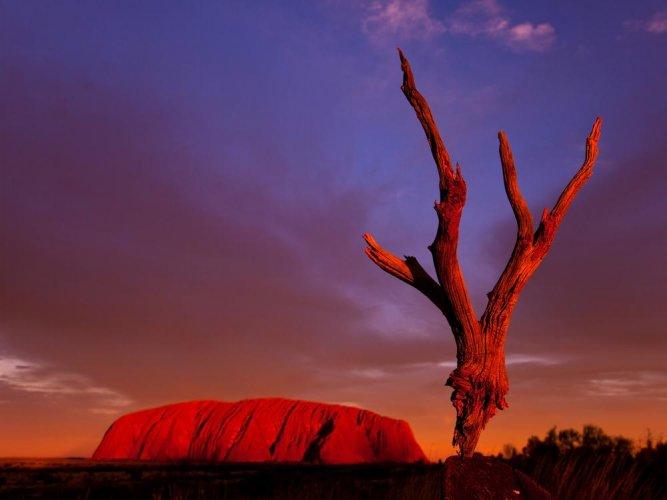 صخرة اولورو استراليا