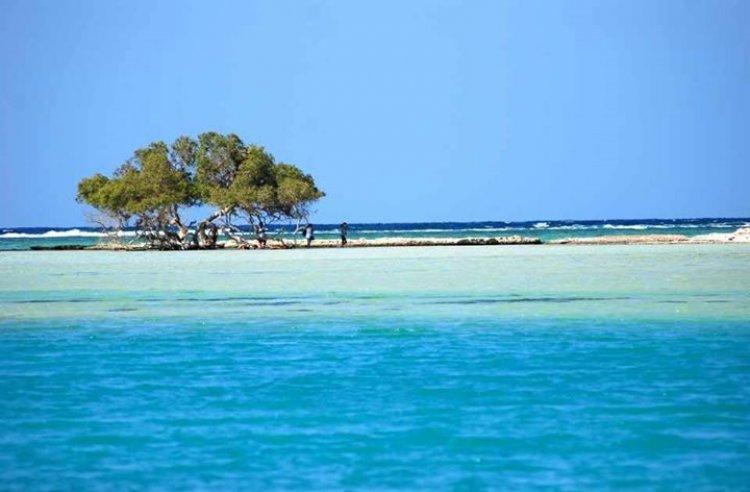 شاطئ حنكوراب مرسى علم