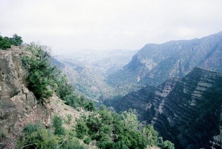 الحديقة الوطنية جيبوتي