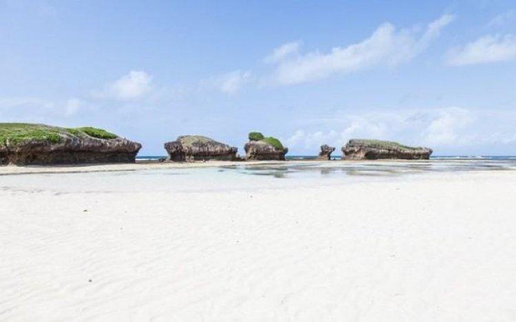 روعة الساحل في ماليندي