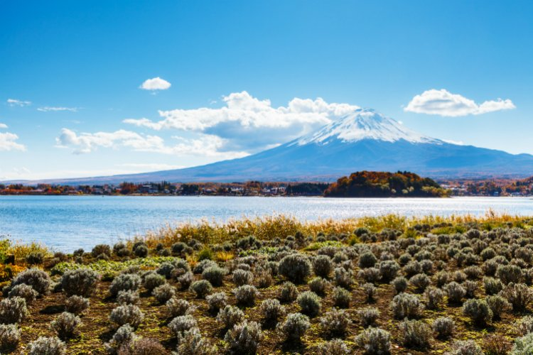 بحيرة كاواغوتشى اليابان