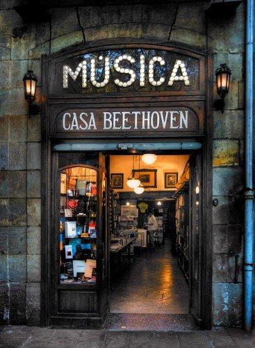 بيت بيتهوفن سوق لمحبي الموسيقى