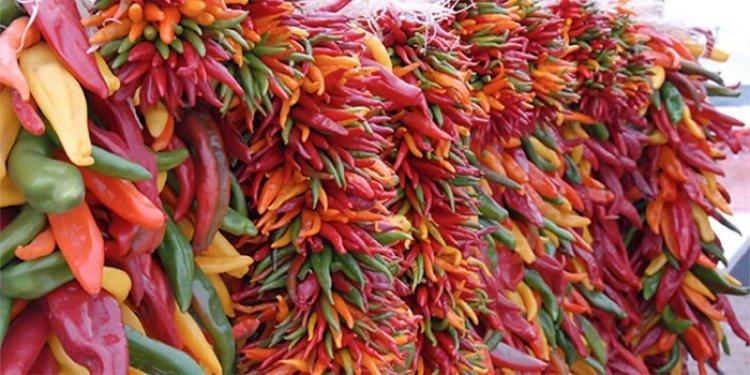 مهرجان الفلفل في المكسيك