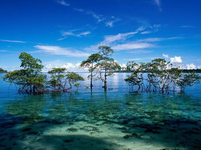 جزيرة هافلوك في جزر اندامان - الهند
