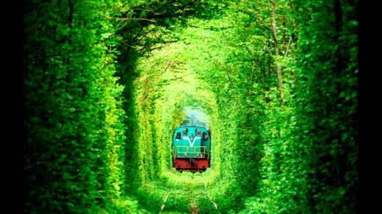 نفق الحب في أوكرانياأجمل مكان تظلله خضرة الأوراق الداكنة