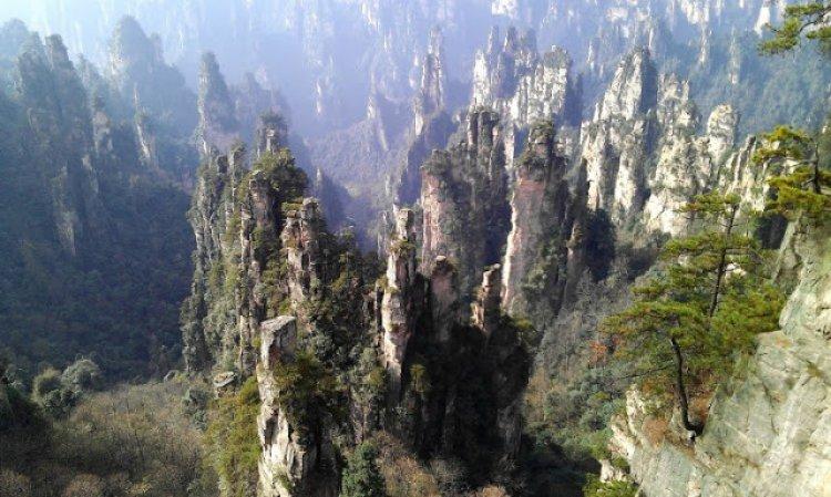 القمم الشاهقة المغطاة بالأشجار في جبال تيانزي في الصين
