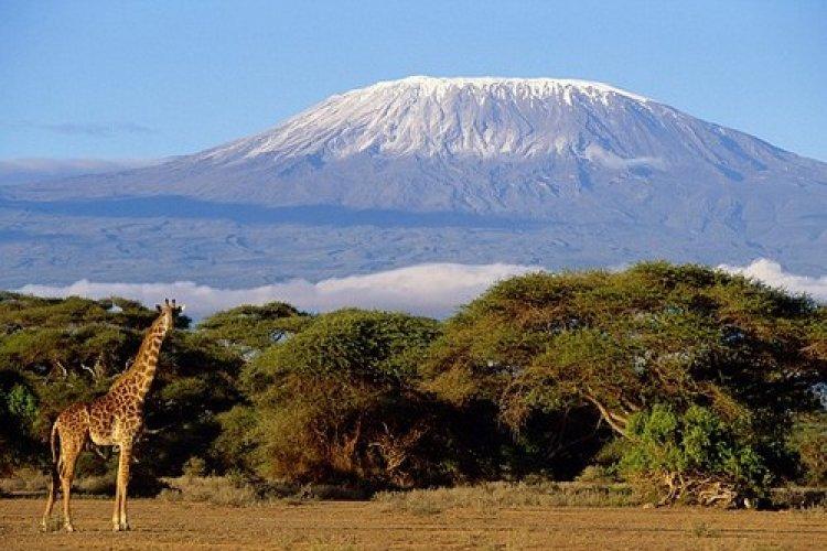 بركان كليمنجارو في تنزانيا