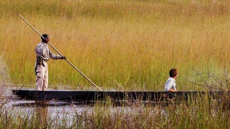 رحلة بالقارب في دلتا أوكافانجو في بوتسوانا