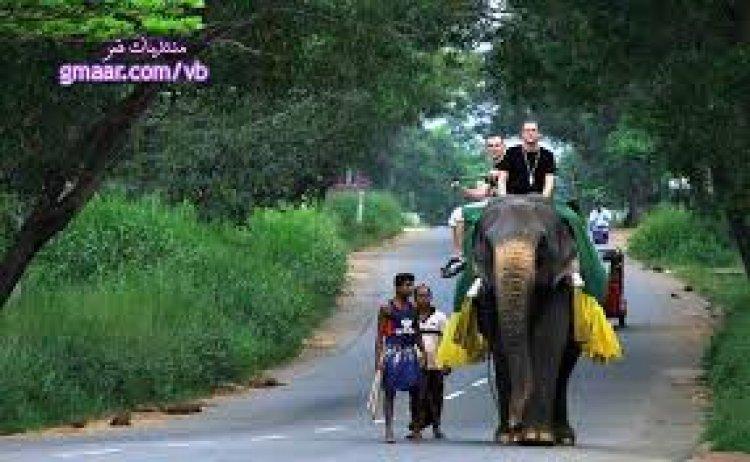 شارع في سريلانكا