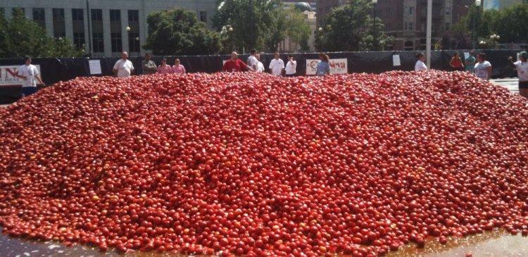 اطنان الطماطم التى تحضرها البلدية للأحتفال