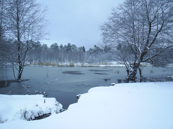 الشتاء في تركيا