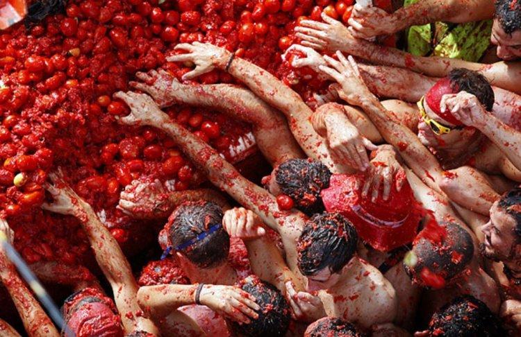 المرح اثناء تراشق الطماطم