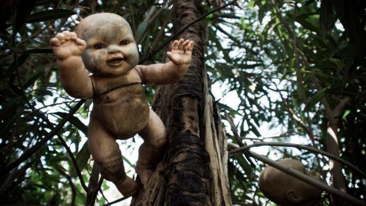 دمية لطفل معلق على شجرة فى جزيرة العرائس