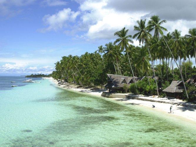 الشاطئ بجزيرة بوهول الفلبينية
