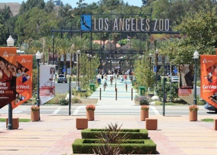 حديقة حيوان لوس انجلوس