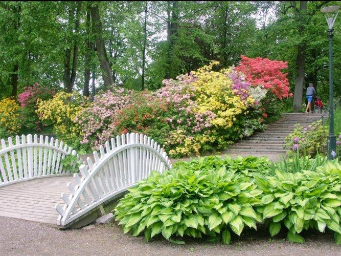 حديقة نورى كاتس