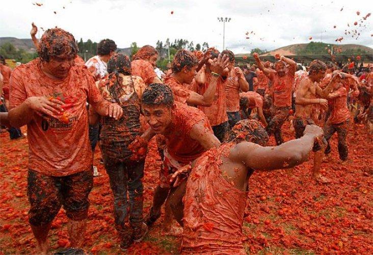 حرب الطماطم فى اسبانيا