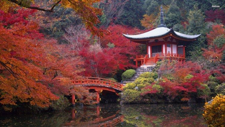 كيوتو فى اليابان