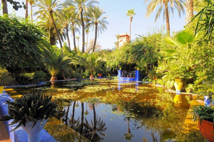 حديقة ماجوريل فى مراكش