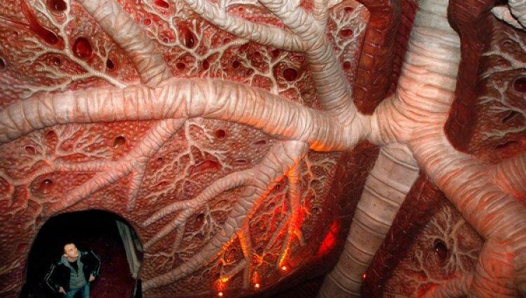متحف جسم الانسان فى هولندا