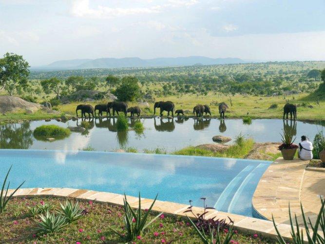Four Seasons Safari Lodge Seregneti – تنزانيا